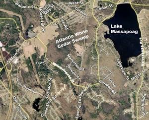 Map of Sharon's Atlantic White Cedar Swamp