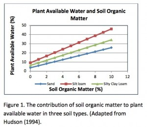Soil organic matter holds water